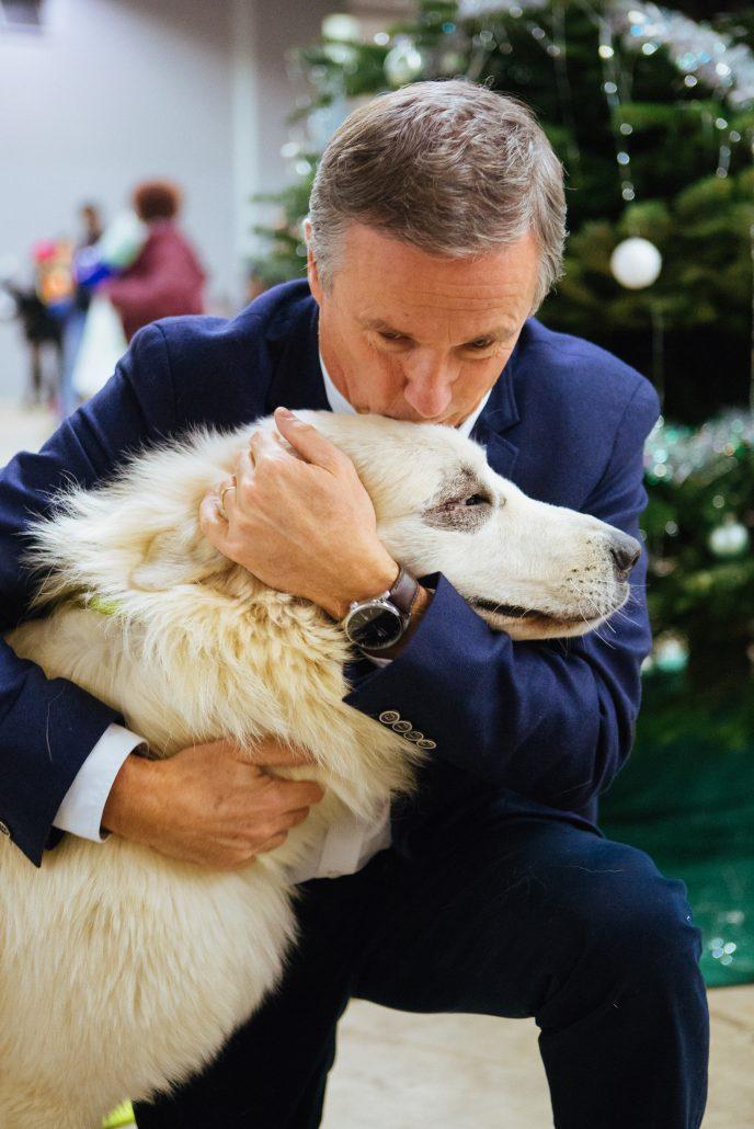 No l des b tes abandonn es 2016 bilan des adoptions chiens et chats - Porte de versailles animaux ...
