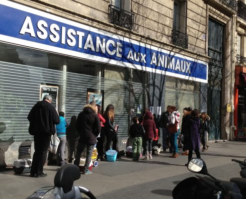Dispensaire animaux Paris