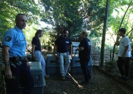 Fondation Assistance Aux Animaux sauvetage