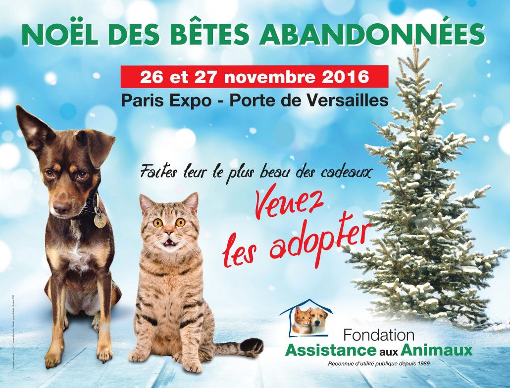 Adoption chiens et chats paris porte de versailles no l for Salon d adoption porte de versailles