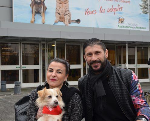 Adoption chien Paris