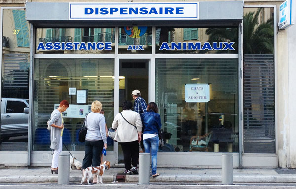 dispensaire animaux nice