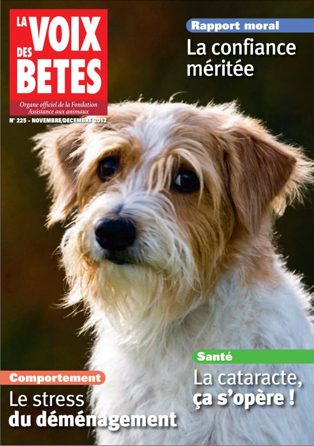 Magazine n°225